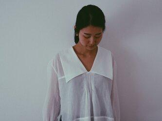 Diphylleia blouseの画像