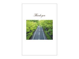 新緑のドライブの39cardの画像