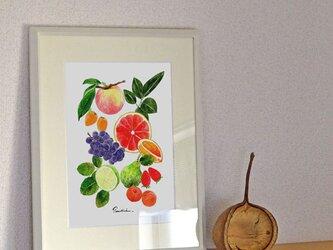 A4ポスター Fruitsの画像