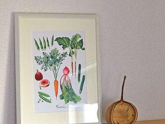 A4ポスター Vegetablesの画像