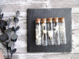 草花のサンプルボトルセット ■ホワイトの色見本の画像
