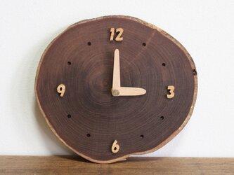 かわいいエンジュの輪切り時計の画像