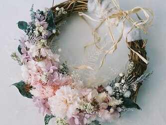 Powdery mother's wreathの画像