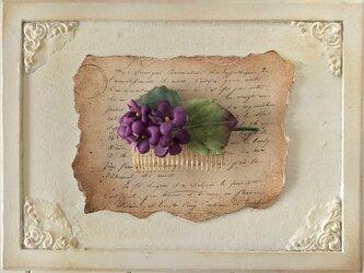 染め花のすみれのコームの画像