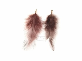 BSC-034-G【5個入り】フェザーチャーム,Brown Feather Charm/30mm x 70mmの画像