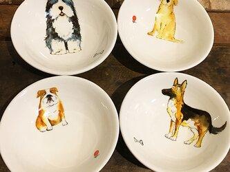 色々わんこ 皿 小ボウル ★ 犬 トリーツ 薬味 餃子 9.5cmの画像
