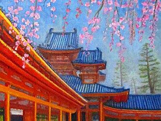 糸桜と平安神宮の画像