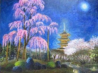 糸桜「不二桜」の画像