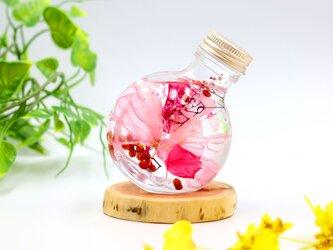 ハーバリウム・フラワーリウム~ピンク~の画像