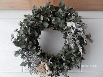 atelier blugra八ヶ岳〜EucalyptusWreathの画像