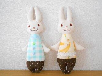 チョコミントとチョコバナナのふたごうさぎの画像