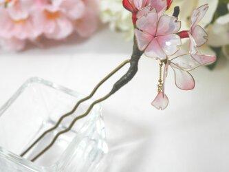 桜のかんざし 「花心」の画像