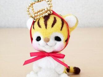 赤ちゃんトラさんの画像