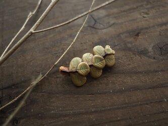 陶のユーカリの葉ブローチの画像