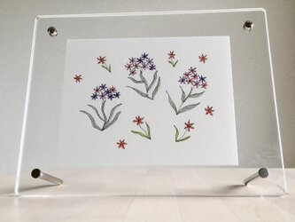 踊る花の画像