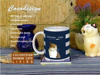 湘南 Cats Cafe  マグカップ 夏ボーダー 004 ハンサムトラ猫の画像
