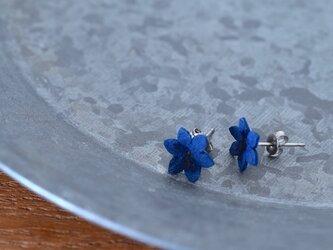 藍染花(雄しべ有)ピアスの画像
