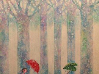 Singing in the rain(F6)の画像