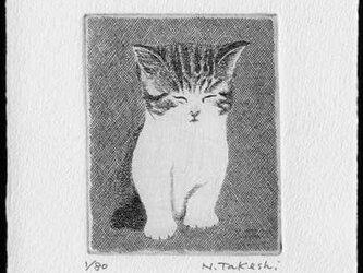 子猫・2019/ 銅版画 (作品のみ)の画像