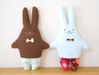 パイルのチョコとミントの双子のうさぎの画像