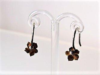 黒蝶貝の花カービング・シルバー925ピアス♪の画像