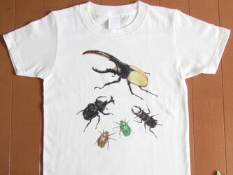 受注プリント全4色☆Tシャツ「虫たちの集会」オリジナルデザイン☆大人から子供まで全てのサイズ対応  昆虫 虫 ヘラクレスの画像