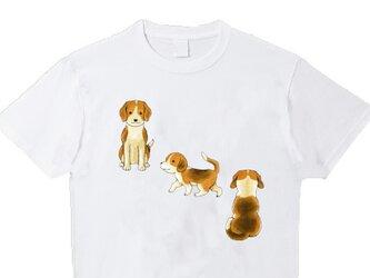 受注プリント全3色Tシャツ「いぬ (ビーグル犬/ミニチュアダックス)」オリジナル☆大人/女性/子供 全てのサイズ対応の画像