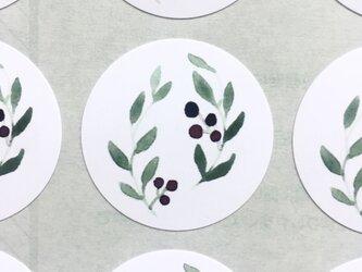 オリーブの水彩画のシールの画像