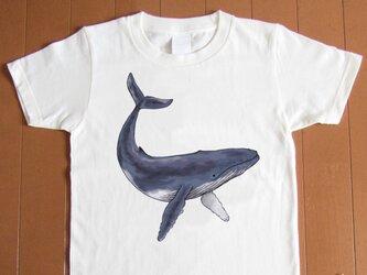 受注プリント☆Tシャツ全3色「くじら」オリジナルデザイン☆大人から子供まで全てのサイズ対応の画像
