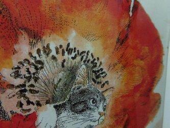 猫ノート ★赤い花の画像