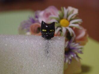 ●オーダー品●黒ネコイヤホンジャックの画像
