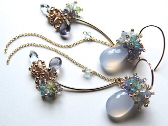 『 Hydrangea ( NLB19' ) 』Pierce by K14GFの画像
