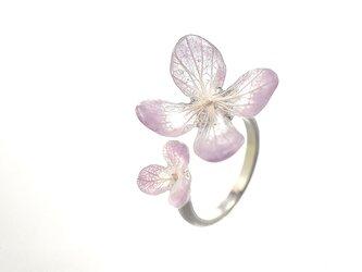 アジサイ【スミレグラデーション】ふたつの花弁のオープンリングの画像