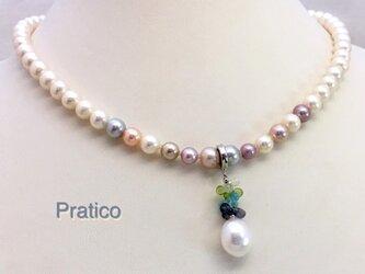 Pratico(プラティコ)の画像