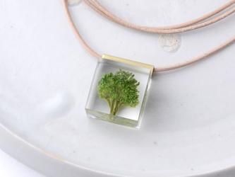 ブロッコリーのネックレス レザー(野菜, レジン, 牛ヌメ革, 送料無料)の画像