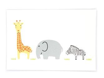 サファリでさんぽ(ポストカード3枚セット)の画像