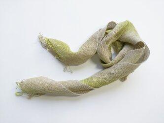 綾織 ペンプコットン ショートストール 黄緑グラデーションの画像