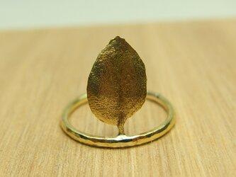 真鍮葉っぱリング の画像