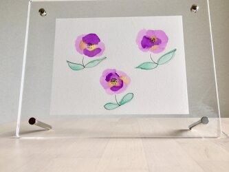 ある日のお花の画像