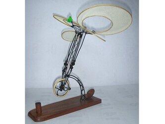 人力 飛行機模型 / 緑色のバラ号の画像