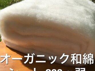 オ-ガニック和綿シ-ト 群馬県産200g弱の画像