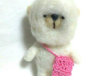 まっ白クマさんの画像