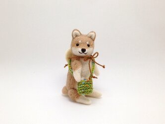お出かけ柴犬さん(2)の画像
