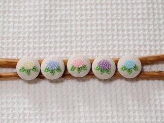 クルミボタン~季節の花シリーズ<アジサイ>の画像