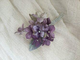 紫陽花(3)の画像