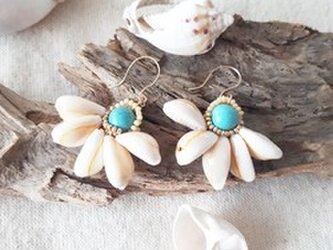 cowrie shell flower pierceの画像