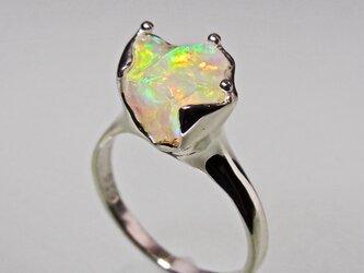 オパール リング * Opal Ring Vの画像