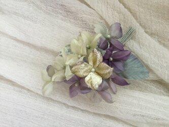 紫陽花(4)の画像