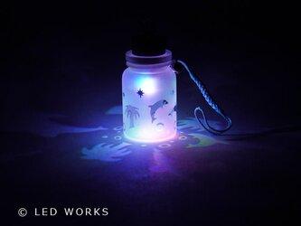 光る小びん イルカ(変色電球)の画像