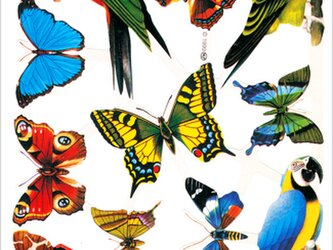 イギリス製クロモス 蝶と鳥#2 ラメなし DA-CHER089の画像